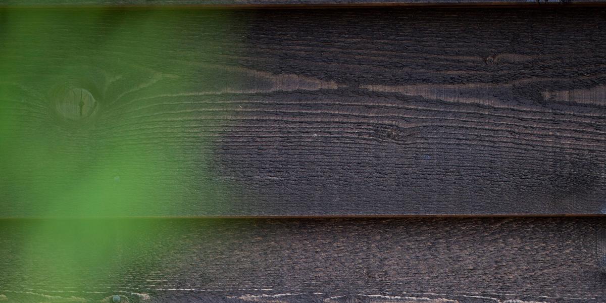 board surface